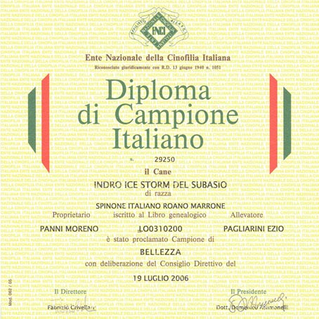 Diploma CH IT Indro Ice Storm del Subasio